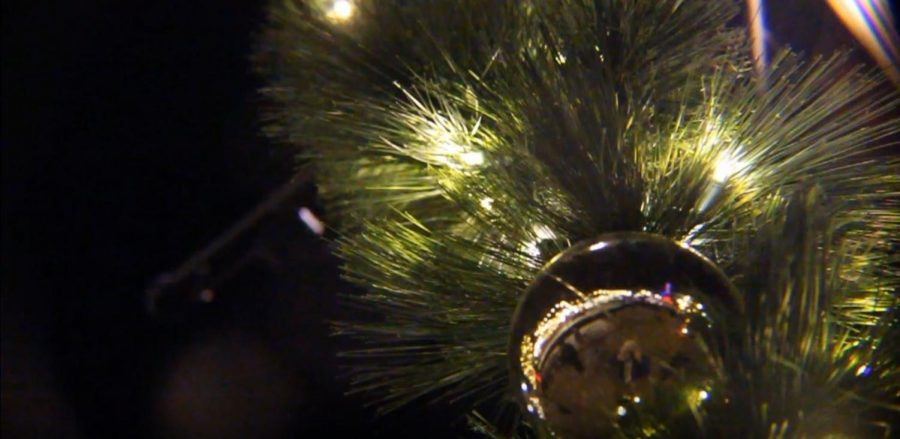 Shine the Lights: Southlands Holiday Parade and Tree Lighting