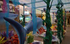Wish Week Aquarium Display