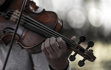 Music's Effect on the Brain