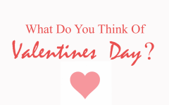 What Do You Think of Valentine's Day?